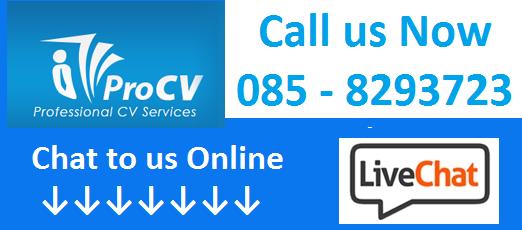 085-8293723 – Ireland's Leading Professional CV Service