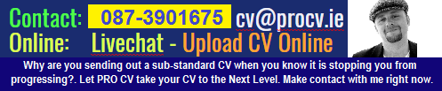 Professional CV Writing Services – 0873901675